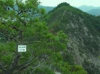 11:55  リルート班 竜王山 (目の前の山)コースで下山