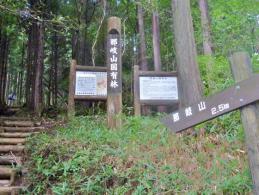 立派な丸太の階段 国有林の杉材で…