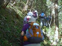 登山口 直ぐから急登 細い道が続く