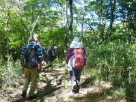 急登後には、軽斜地となり話し声も聞こえる樹林の道