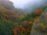 鳥取県側の紅葉