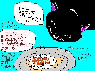 猫まんまが食事だよ!