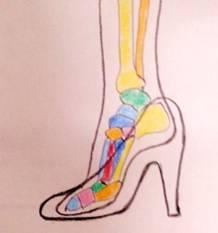 ハイヒールを履いたときの足の形