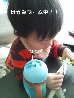 3_20121221213740.jpg