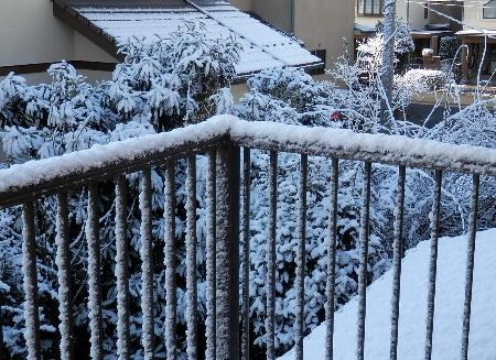 snow_20140206