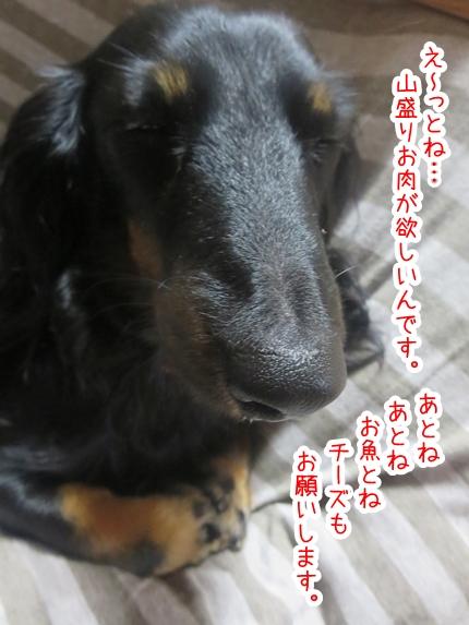 IMG_1027_2.jpg