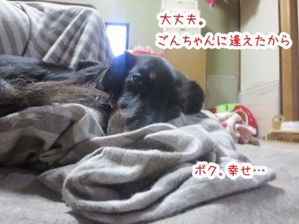 IMG_1130_4.jpg