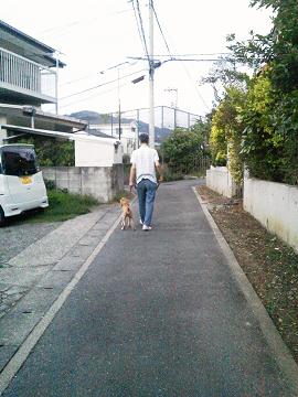 NEC_00410004.jpg