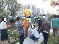 017_20121023213726.jpg
