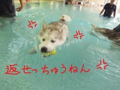 132_20120811221257.jpg
