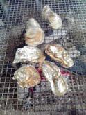 恵比寿牡蠣2
