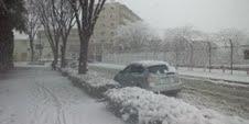 14昼雪1