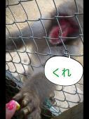 LINEcamera_share_2012-08-24-12-33-24.jpg