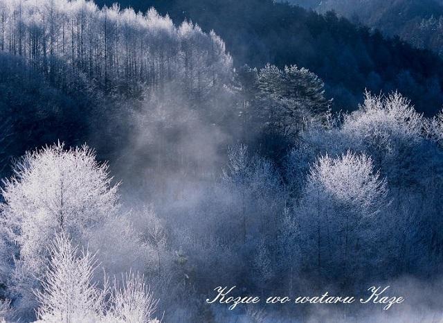 冬の情景17