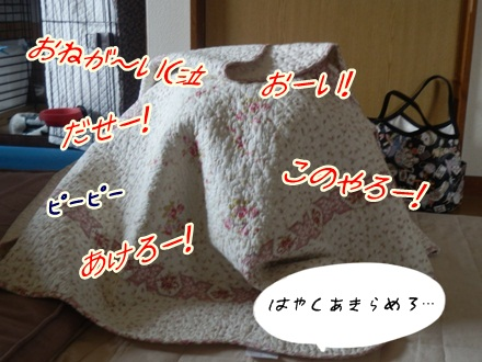 002_20121127110457.jpg