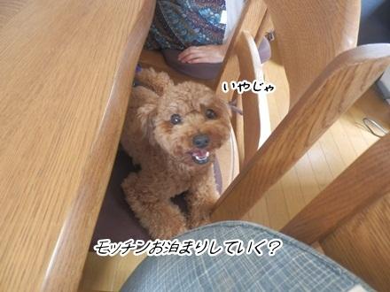 006_20120721001220.jpg