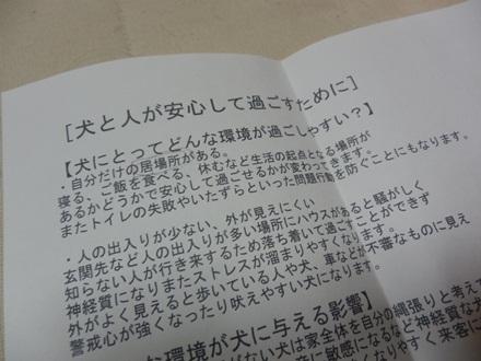009_20121118231148.jpg