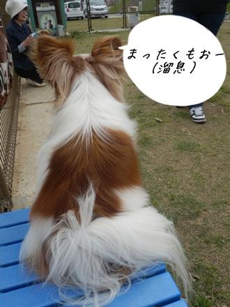 020_20120601230637.jpg