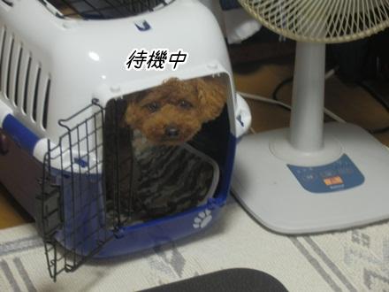 099_20120713234316.jpg