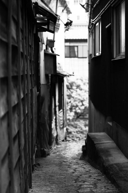 Photo-185
