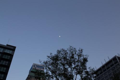 Photo-328.4