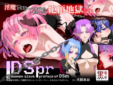 DSpr_pr2.jpg