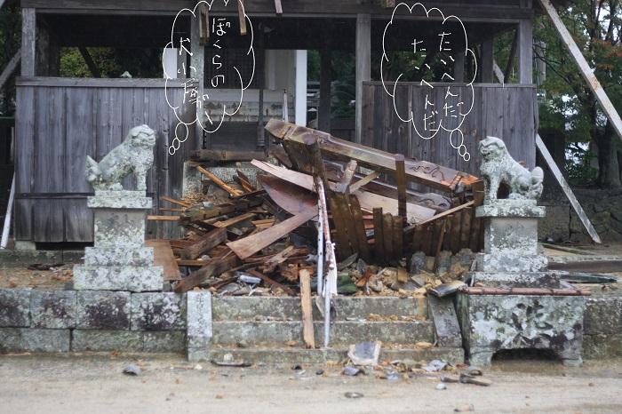犬小屋壊滅