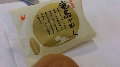 mini_11_ryoumagaiku_DSC_0010.jpg