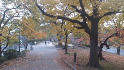 mini_21_kouroen_DSC_0603.jpg