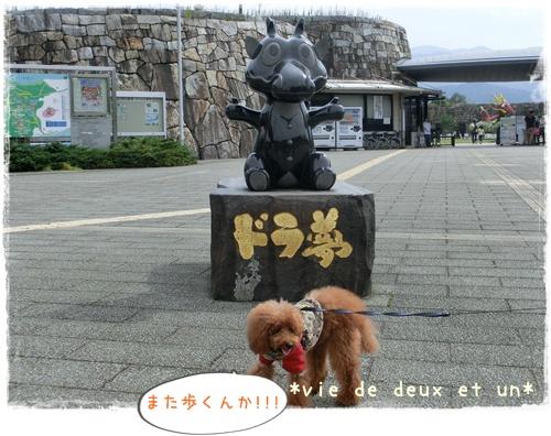 20141011blog42.jpg