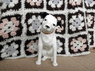 ビクター犬1
