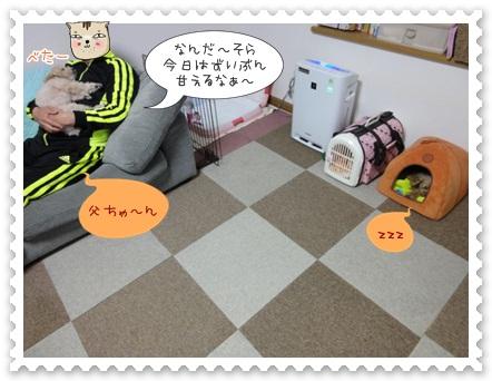 a13_20120514215332.jpg