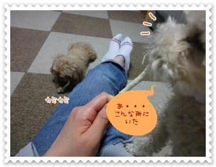 b10_20120519212445.jpg