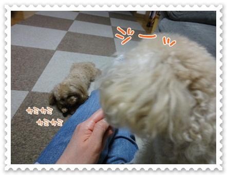 b11_20120519212445.jpg