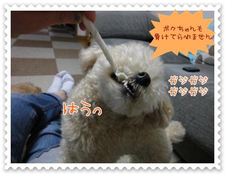 b12_20120519212444.jpg
