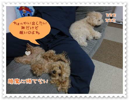 b13_20120607204023.jpg