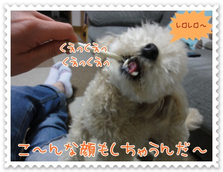 b15_20120519212612.jpg