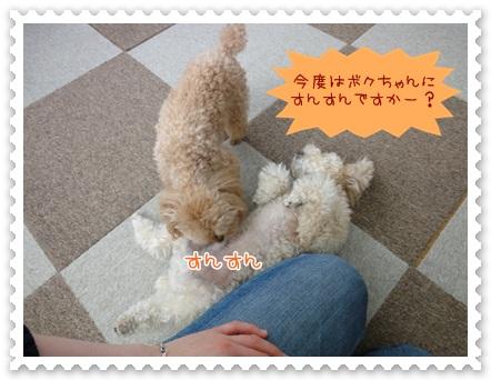 b15_20120526140715.jpg