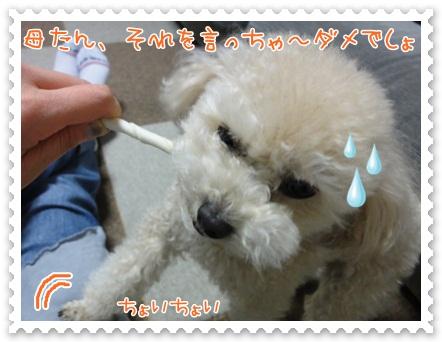 b18_20120519212610.jpg