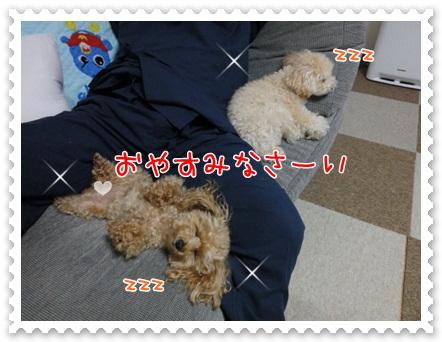 b18_20120607204019.jpg