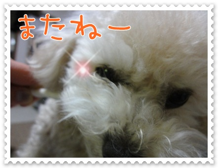 b20_20120519213138.jpg
