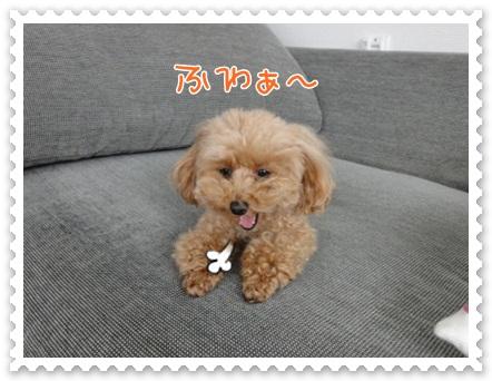 b20_20120526141022.jpg