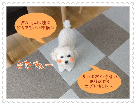 b24_20120526141019.jpg