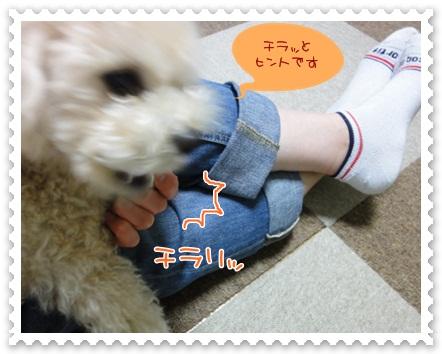 b2_20120519211723.jpg