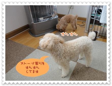 b2_20120526134726.jpg