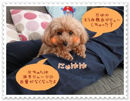 b2_20120607203712.jpg