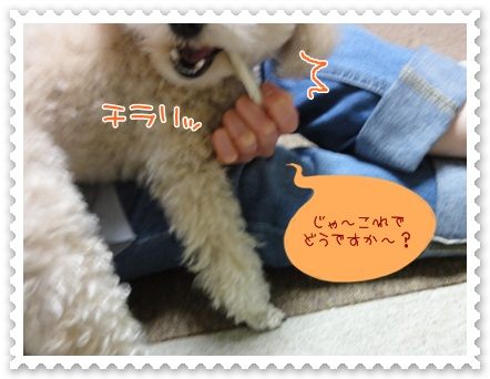 b3_20120519211722.jpg