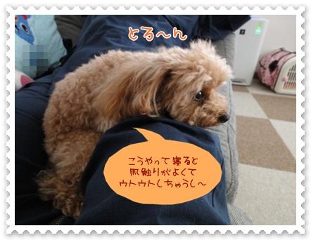 b3_20120607203711.jpg