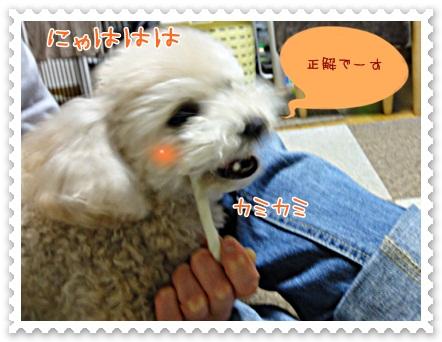 b4_20120519211721.jpg