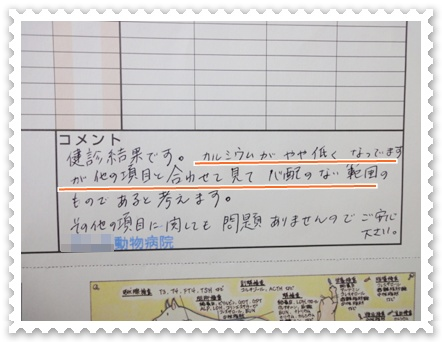 b5_20120421145401.jpg